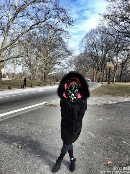 谢娜晒纽约街拍照 秒变&;蒙面超人&;和&;高冷御姐&;