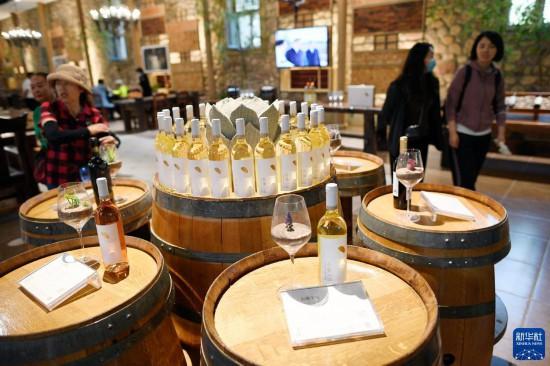 贺兰山下:美景+美酒 打造葡萄酒新业态